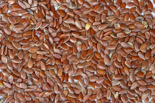 Brown_Flax_Seeds[1]