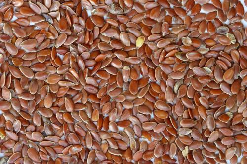 seminte de in in timpul sarcinii