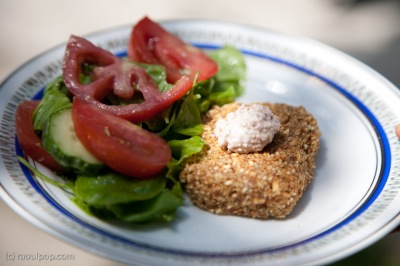 raw-hamburger-with-salad-2