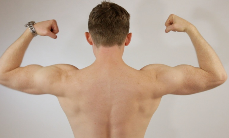 Raoul Pop - Back Biceps