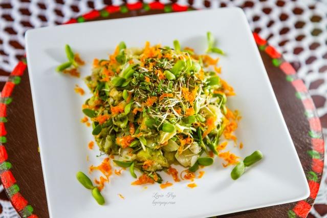 Salata probiotica cu avocado si vlastari